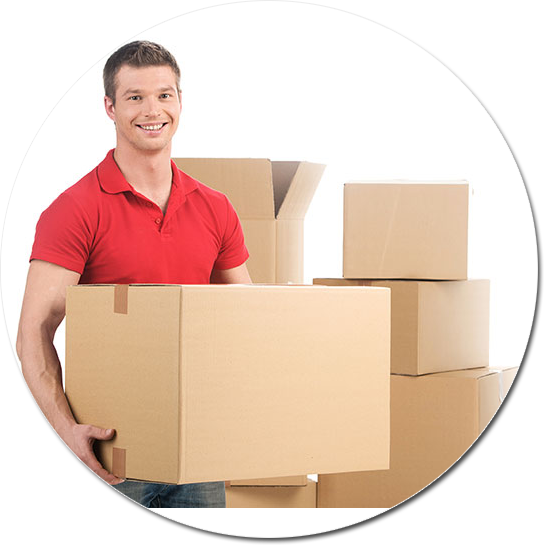 Are you looking for moving companies in Silver Spring, MD?